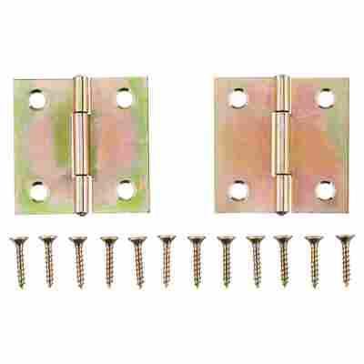 Scharniere Stahl verzinkt 40 x 40 mm 2 Stück