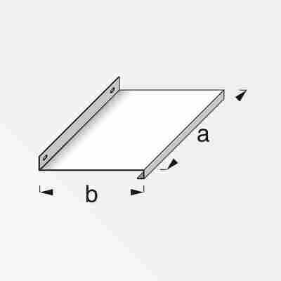 Tablar Coaxis® blank Aluminium 800 x 230 mm