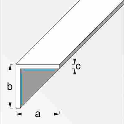 Winkel 2,5 cm