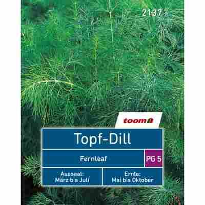 Topf-Dill