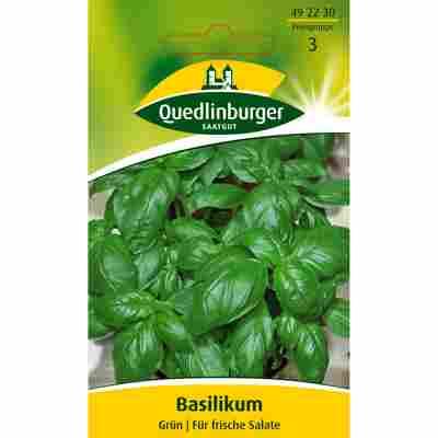 Basilikum Grün
