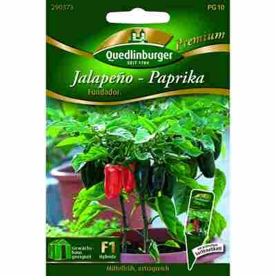 Premium Jalapeno Paprika 'Fundador'