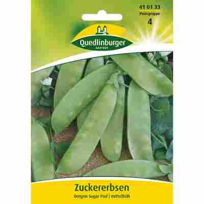 Zuckererbse 'Oregon Sugar Pod'
