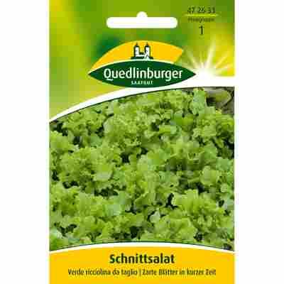 Schnittsalat 'verde ricciolina da taglio'