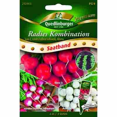 Premium Radies Kombi (3 Sorten), Saatband
