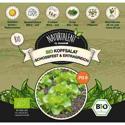 Naturtalent by toom® Bio-Kopfsalat