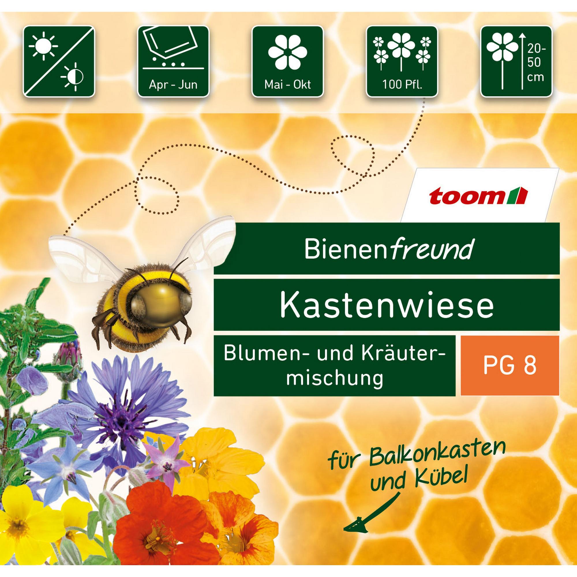 toom Bienenfreund Blumen- und Kräutermischung 'Kastenwiese'