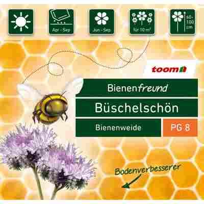 Bienenfreund Büschelschön