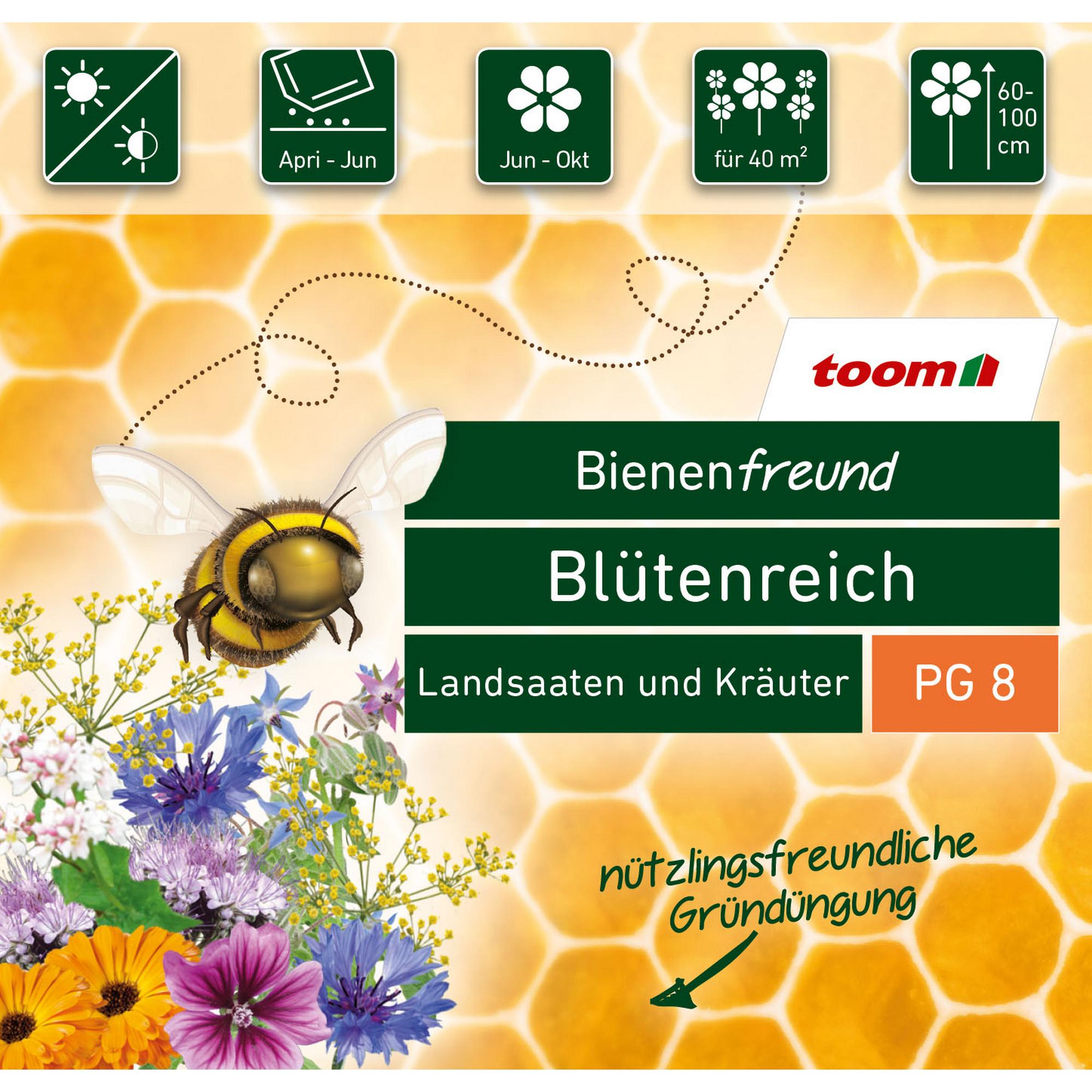 toom Bienenfreund Blumen- und Kräutermischung 'Blütenreich'