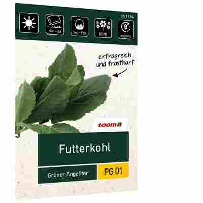Futterkohl 'Grüner Angeliter'