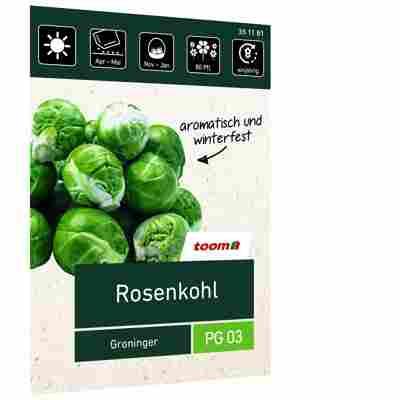 Rosenkohl 'Groninger'