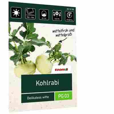 Kohlrabi 'Delikatess witte'