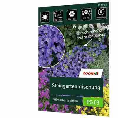 Steingartenmischung 'Winterharte Sorten'