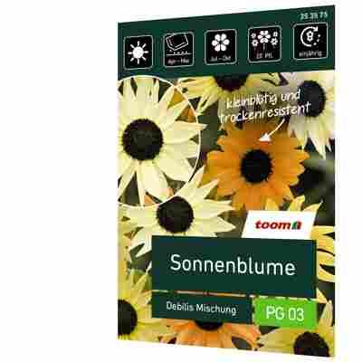 Sonnenblume 'Debilis Mischung'