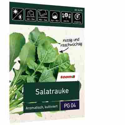Salatrauke 'Aromatisch, kultiviert'