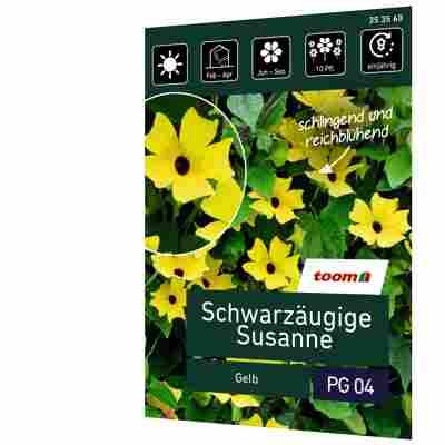 Schwarzäugige Susanne 'Gelb'