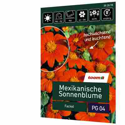 Mexikanische Sonnenblume 'Fackel'
