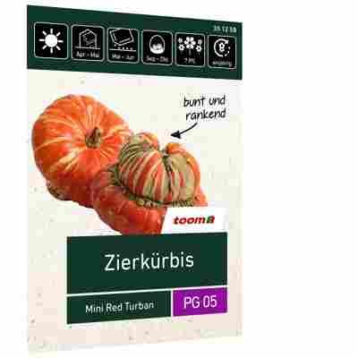 Zierkürbis 'Mini Red Turban'