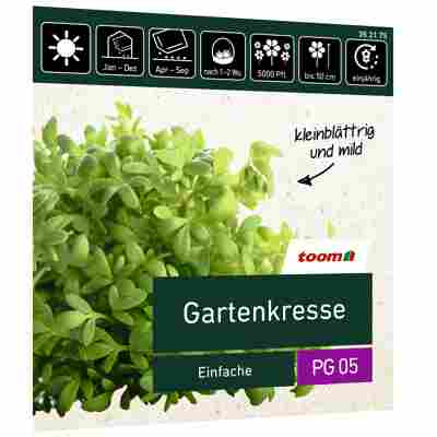 Gartenkresse 'Einfache Großpackung'