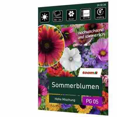 Sommerblumen 'Hohe Mischung'