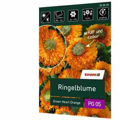 Ringelblume 'Green Heart Orange'