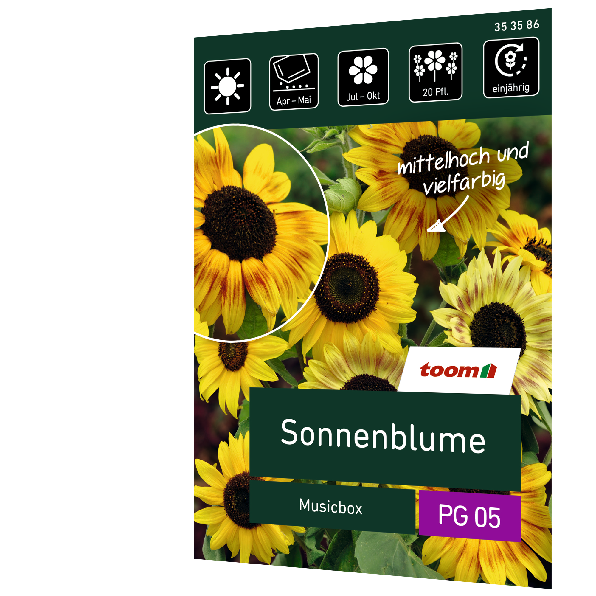 toom Sonnenblume 'Musicbox'