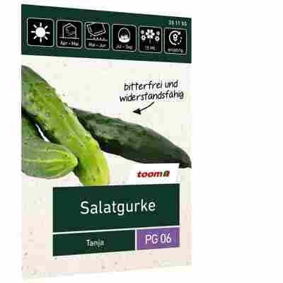 Salatgurke 'Tanja'