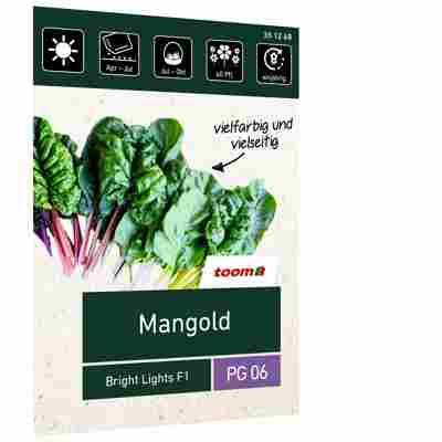 Mangold 'Bright Lights F1'