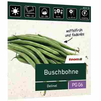 Buschbohne 'Delinel'