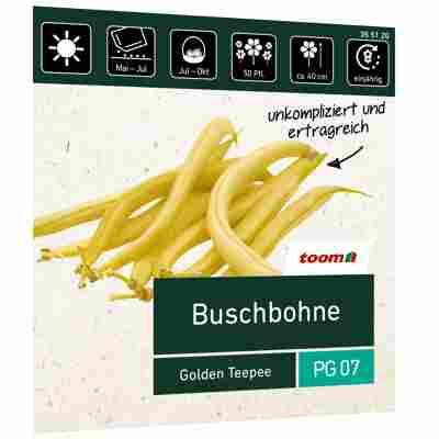 Buschbohne 'Golden Teepee'