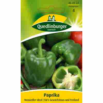 Paprika 'Neusiedler Ideal'