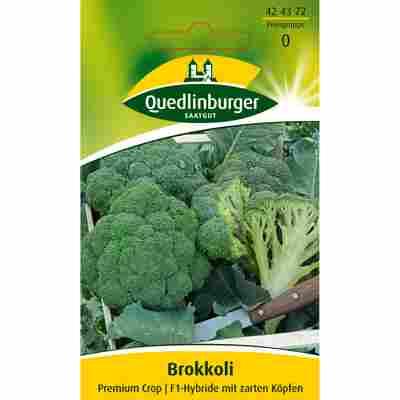 Brokkoli 'Premium Crop'