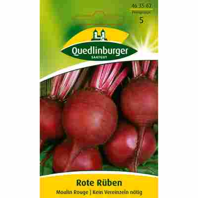 Rote Rübe 'Moulin Rouge'
