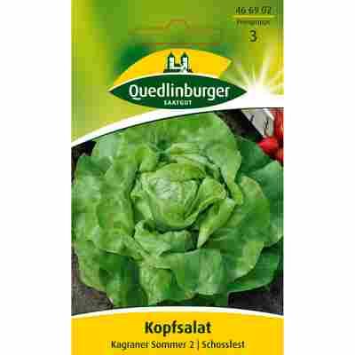 Kopfsalat 'Kagraner Sommer 2'