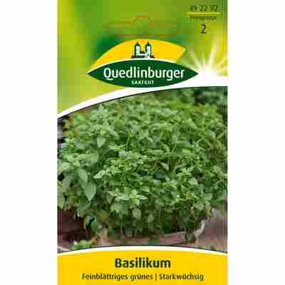 Basilikum feinblättriges grünes