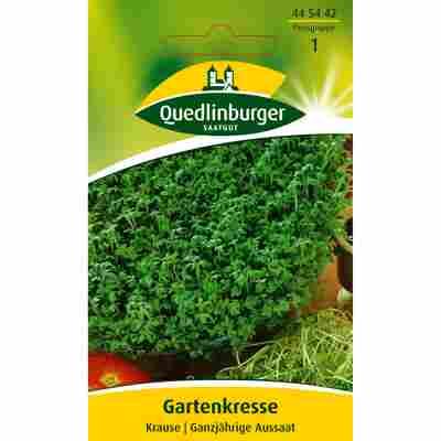 Gartenkresse Krause
