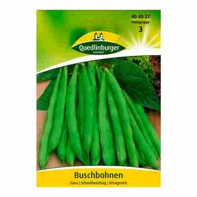 """Buschbohne """"Saxa"""""""