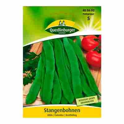 """Stangenbohne """"Hilda"""""""