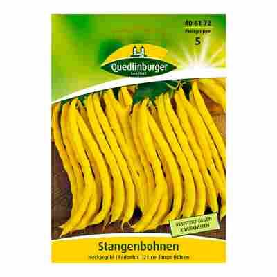"Stangenbohne ""Neckargold"""