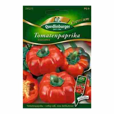 "Tomatenpaprika ""Zsuzsanna"" 10 Stück"