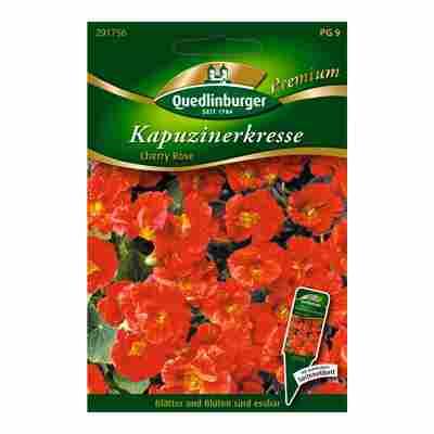 "Kapuzinerkresse ""Cherry Rose"" PG 9"