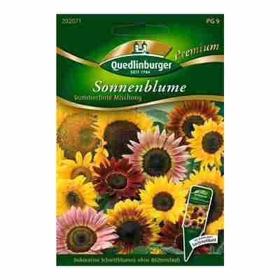 """Sonnenblume """"Summertime-Mischung"""" 10 Stück"""