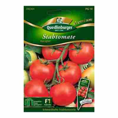 "Stabtomate ""Harzglut"" 15 Stück"