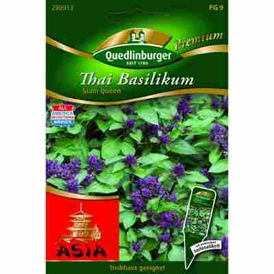 Premium Thai-Basilikum 'Siam Queen'