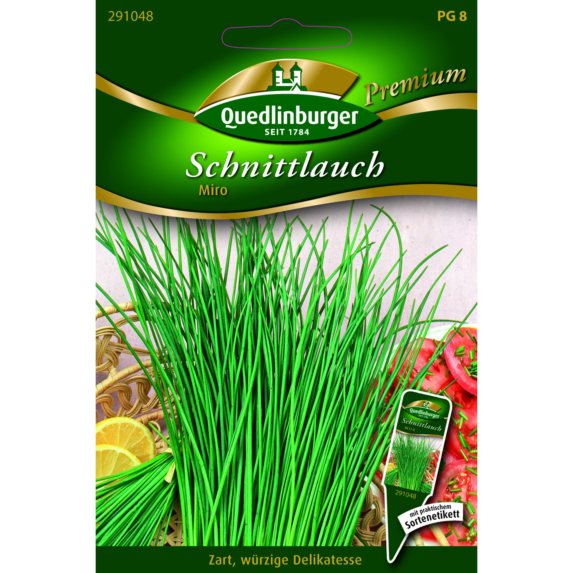 """Delikatesse Schnittlauch /""""Miro/"""" Quedlinburger Premium Saatgut"""