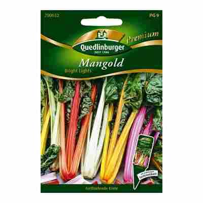 "Mangold ""Bright Lights"""