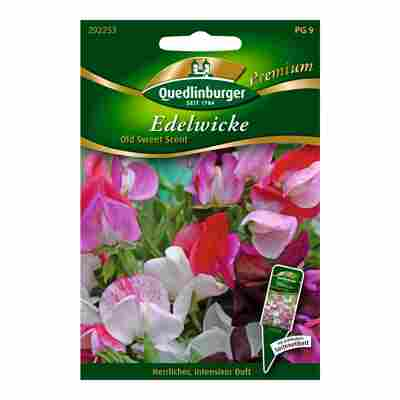 """Edelwicke """"Old Sweet Scent"""""""