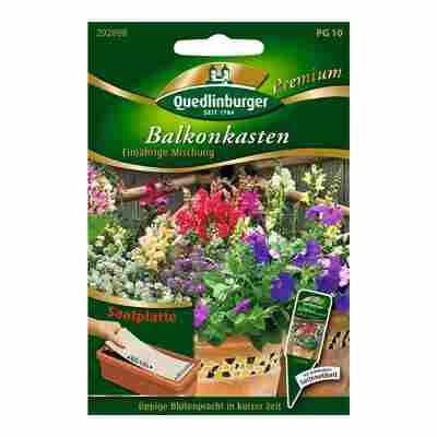 """Balkonkasten-Blumenmix """"Einjährige Mischung"""" Saatplatte"""