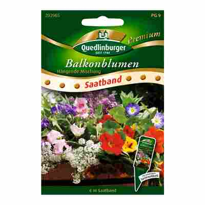 "Balkonblumen ""Hängende Mischung"""