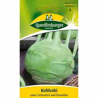 Kohlrabi 'Lanro'